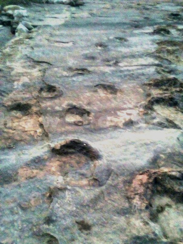 следы динозавров в Боливии
